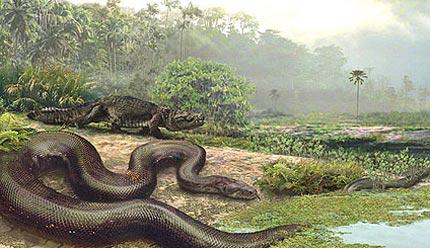 Ảnh minh họa loài rắn lớn nhất trong lịch sử trái đất.